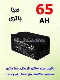 65 247x329 باتری یو پی اس