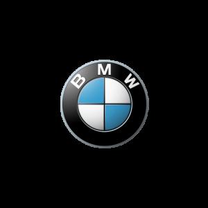 BMW 300x300 باتری مناسب خودروها