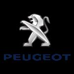 Peugeot 150x150 باتری پژو