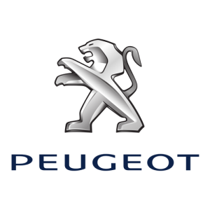 Peugeot 300x300 باتری مناسب خودروها