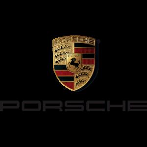 Porsche 300x300 باتری مناسب خودروها