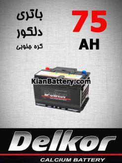 75 Delkor 247x329 آشنایی با باتری دلکور