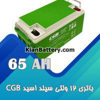 باتری 65 آمپر ساعت یو پی اس CGB