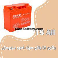 باتری 18 آمپر ساعت یو پی اس موریسل