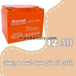 مشخصات باتری 42 آمپر ساعت یو پی اس موریسل